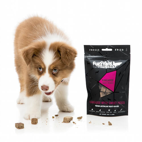 FuzzYard Supernatural Dog Treats | Vanillapup